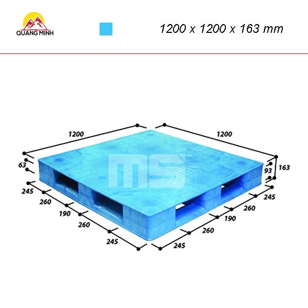 pallet-nhua-mat-bit-wn2-1212-1200-x-1200-x-163-mm